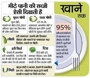 वर्ल्ड हेल्थ-डे: 1700 किसानों ने तय किया रसोई तक सेहत पहुंचाएंगे